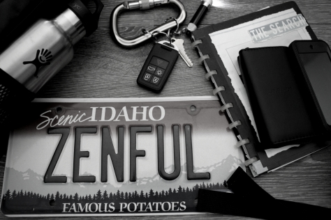 Zenful Life Blog Post Pic - Zenful License Traveler
