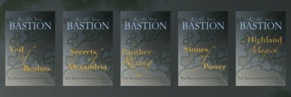 THE TRAVELER series Covers